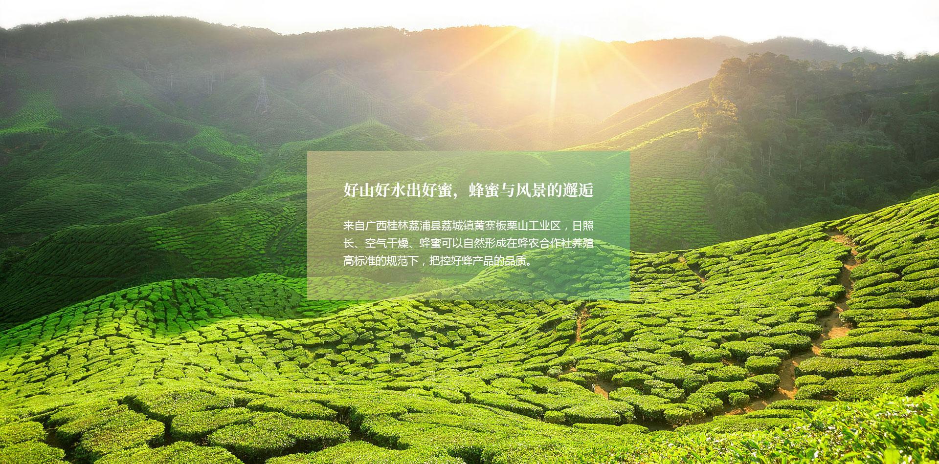 桂林周氏顺发食品有限公司