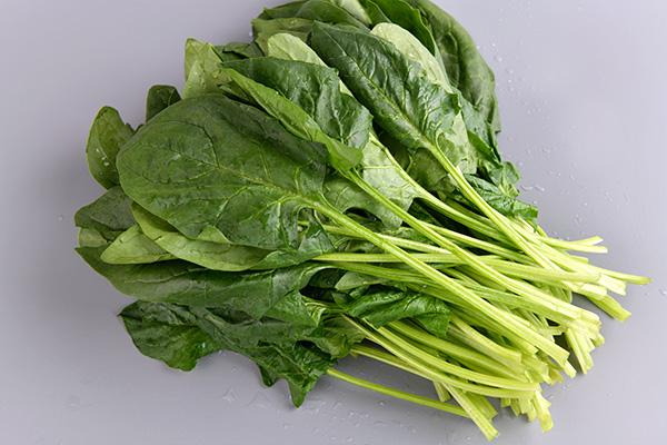菠菜-菜之源凈菜