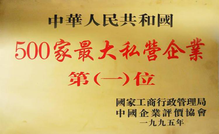 中國500家私營企業第一名