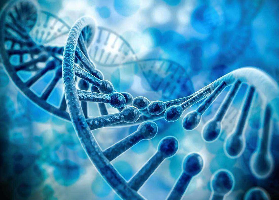 生物技術最新方向是什么?10余位院士成都談生物技術創新發展