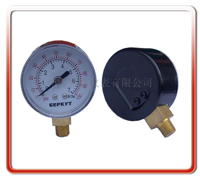 50MM徑向氣泵壓力表