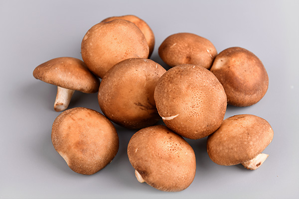 香菇-菜之源凈菜