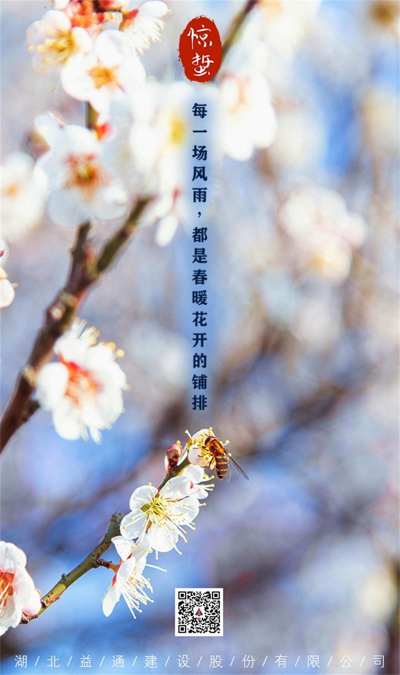 驚蟄-每一場風雨都是春暖花開的鋪排