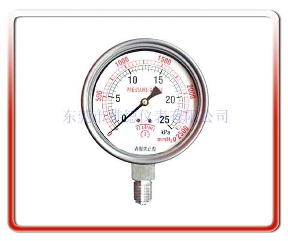 100MM徑向德國款式膜盒表(德國內卡式激光焊接型全不銹鋼結構)
