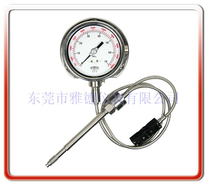 柔性管帶變送輸出熔體壓力表