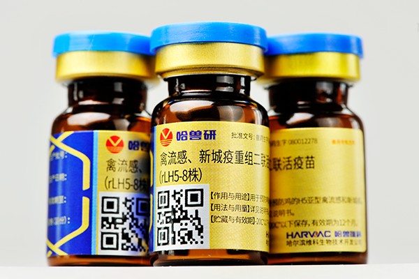 禽流感、新城疫重组二联活疫苗(rLH5-8株)