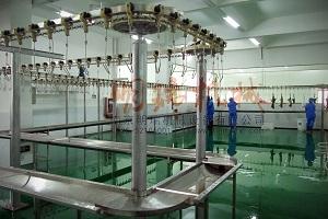 建造肉类加工厂的攻略探讨