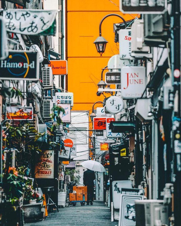 人類所有的偉大文化都是由城市產生的