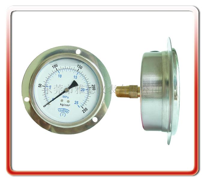 100MM軸向耐震油壓表