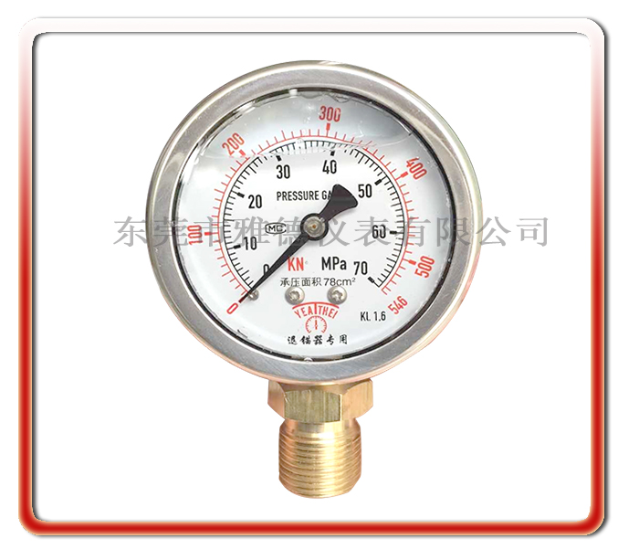 退錨器專用耐震表