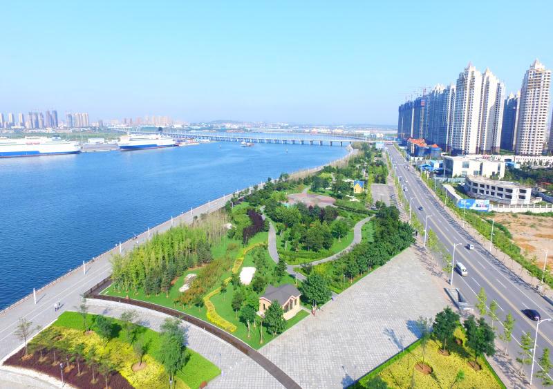 綠化項目-大連開發區濱海公園綠化升級改造工程