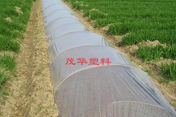 茂華塑料-流滴地膜