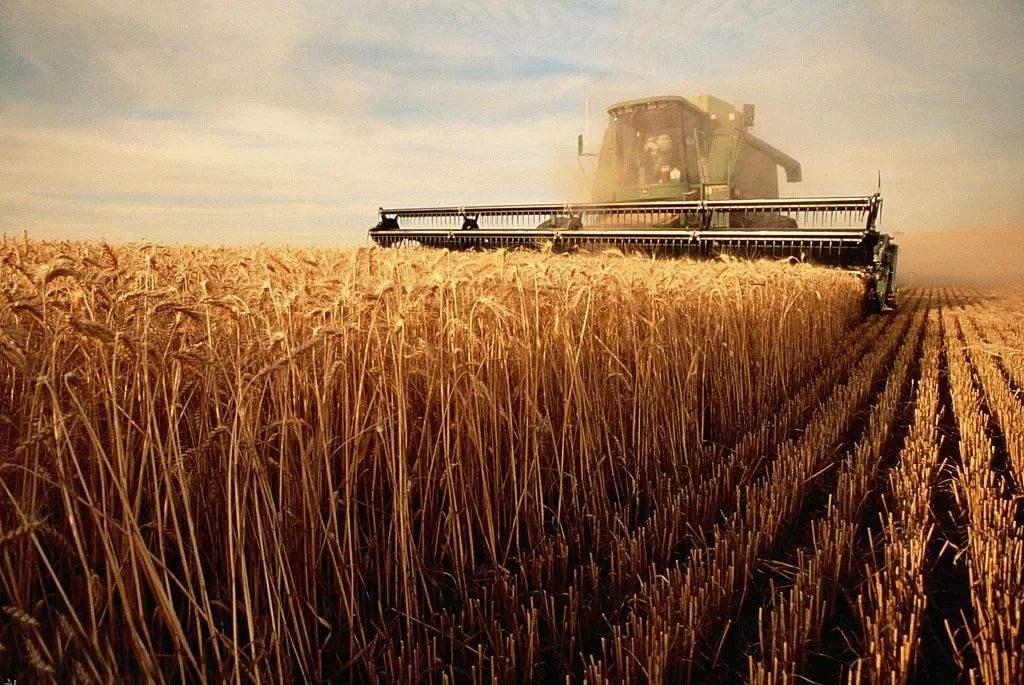 國家農業廢棄物循環利用創新聯盟成立
