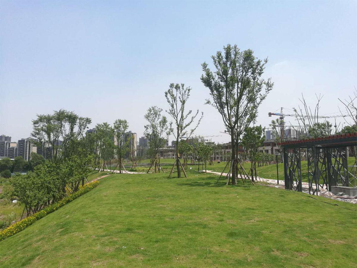高科江瀾公園