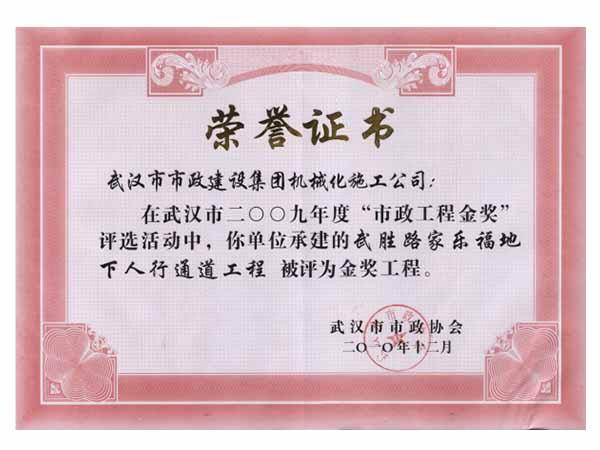 2010市金獎-武漢勝路家樂地下人行通道工程