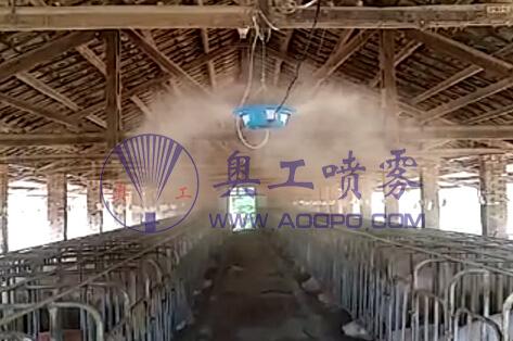 全国生猪恢复发展势头向好? 养猪场降温消毒成关键