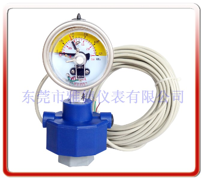 隔膜式感應器壓力表