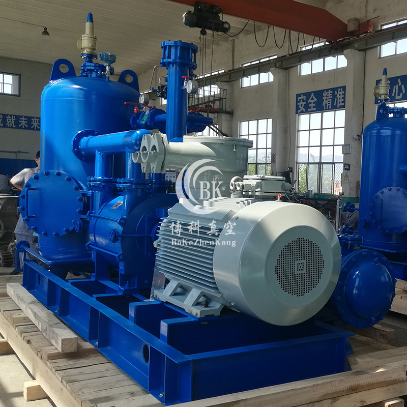 2BE1系列水環真空泵及壓縮機