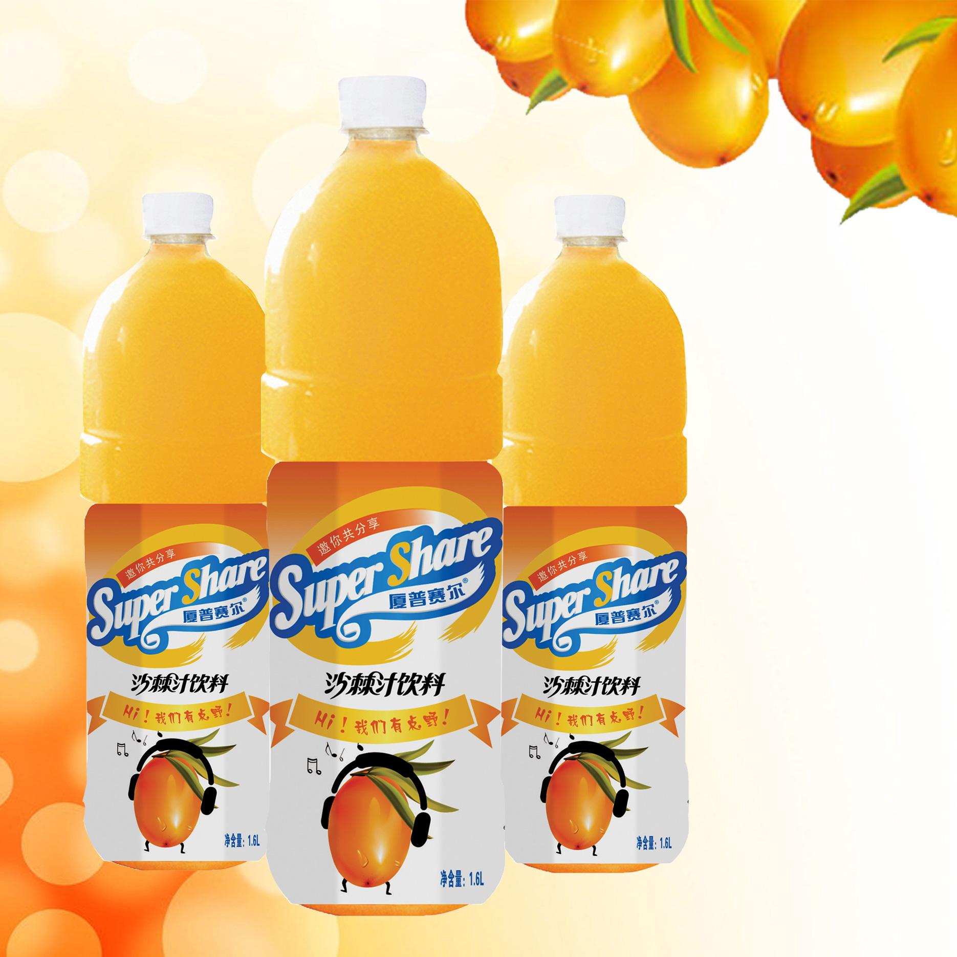 1.6L沙棘汁饮料