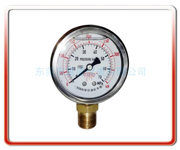 張拉油缸專用耐震表