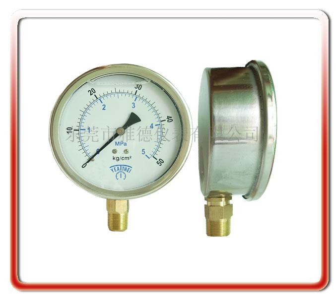 100MM徑向耐震油壓表